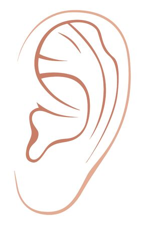 Left ear of man or woman. Line art Illustration. Isolated on a white background. Stok Fotoğraf