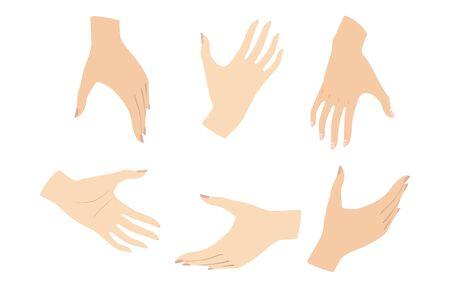 Set of female hands Gestures. Women hands. Vector illustration Stock Vector - 137503026