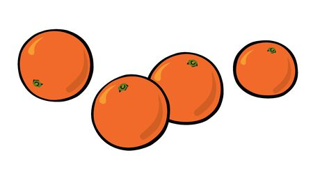 Set of mandarin oranges.  Pop-art. Retro style. Vector illustration Ilustrace