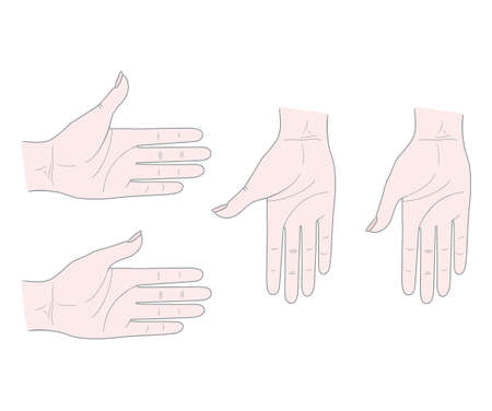 Gestures. Woman's hand with thumb inside. Vector. Isolated on a white background. 向量圖像