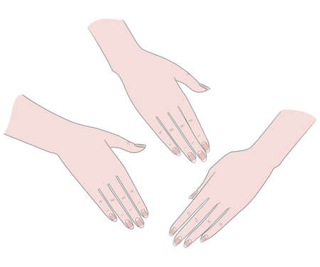 Gestures. Palm Woman's hand on the back. Vector. Isolated on a white background.