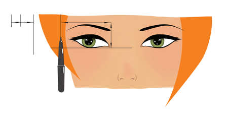Makeup. Eyebrows and eyes. calculation of beauty and length of an eyebrow. Portrait of a red-haired girl with green eyes. Illustration. Isolated on white background.