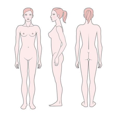 Template Figure of the woman. Front, rear and side views. Vector. Isolated on white background