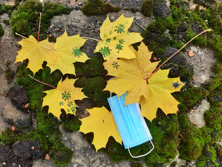 Coronavirus autumn. Yellow maple leaf and disposable medical mask on a background of green moss and bricks. Virus. Influenza