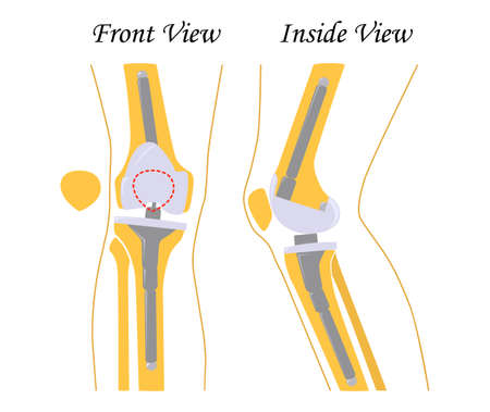 Human knee leg front and back view. Illustration. Flat design