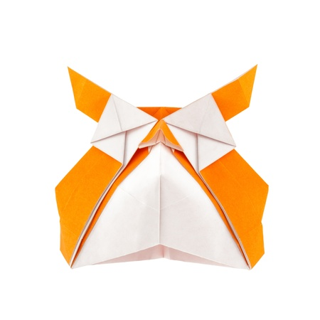 Origami owl isolated on white background photo