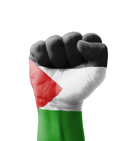 Fist of Palestine flag painted, multi purpose concept - isolated on white background