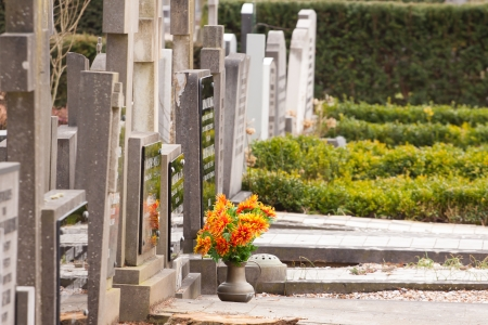 Colorful flowers on a grave Stock Photo - 13849992
