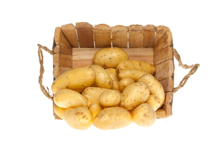 bunch of freshly harvested potatoes coming out a wooden basket on a white background photo