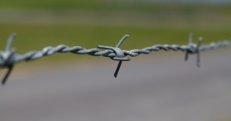 A close-up of barbed wire photo