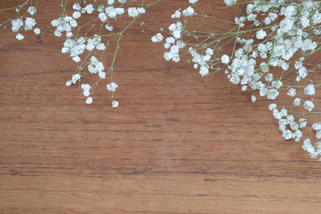 invitation background: white flowers or gypsophilia paniculata on wooden background Stock Photo