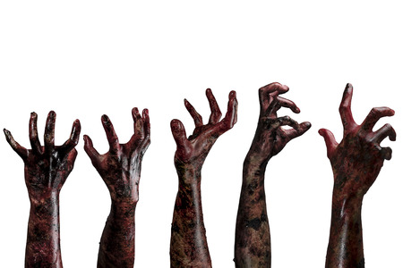 Blood zombie hands on white background,zombie theme, halloween theme