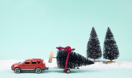 field mint: Red car and trailer carrying a Christmas tree on sweet pastel retro turquoise color background. Stock Photo