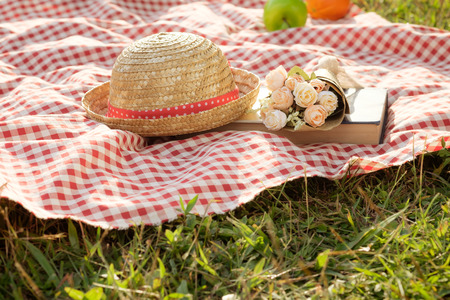 Outdoor picnic at the summer sunny day. Vacation leisure lifestyle concept.