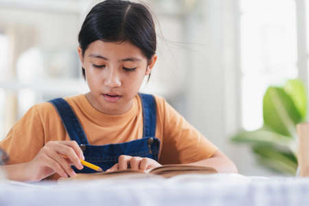 Asian girl reading and doing homework at her home. Education and self learning concept. Фото со стока