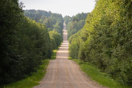 Road in the countryside landscape in Latvia in summer morning light, going up and down through green forest Banco de Imagens