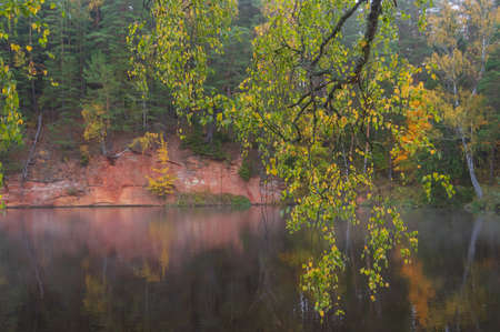 Foggy autumn landscape with red standstone rock grown by green and yellow trees by the Brasla river. Fog over the water, and birch tree branch with yellow and green leaves hanging over the water