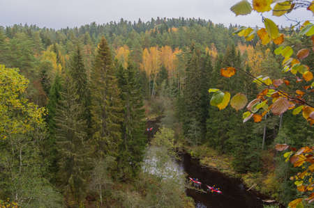 Aerial view to Brasla river running through green and yellow forest in autumn. Three red canoe boats in the river.
