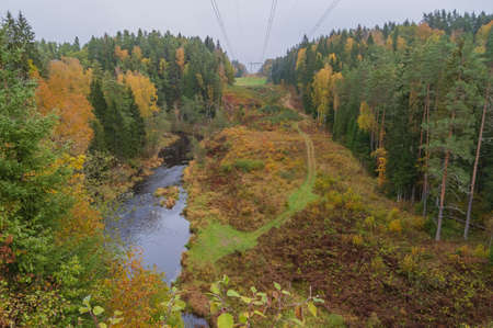 Aerial view to Brasla river running through green and yellow forest in autumn.