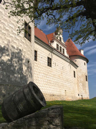 View to the Bauska Castle with the hystorical gun in foreground and blue sky in foreground on bright a summer day in Bauska, Zemgale, Latvia
