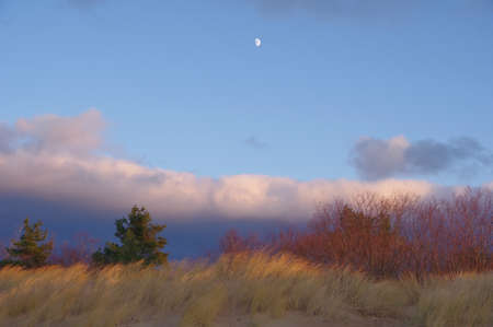 Sandy dunes by Baltic sea in windy spring evening under dramatic beautiful clouds Banco de Imagens
