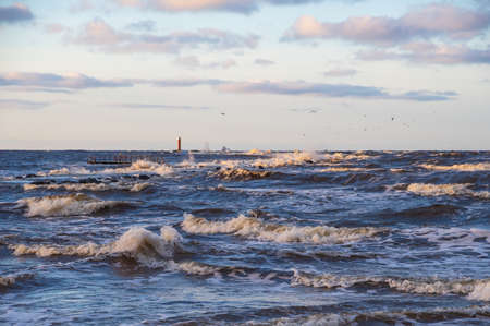 Wavy water of the Baltic sea and cloudy sky in the evening. Orange Mangalsala lighthouse on the horizon. Gulls flying over the waves. Focus on foreground Banco de Imagens