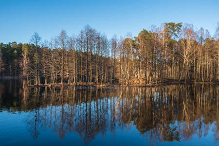 Landscape with bare trees and clear blue sky reflecting in the calm water on sunny spring evening Banco de Imagens