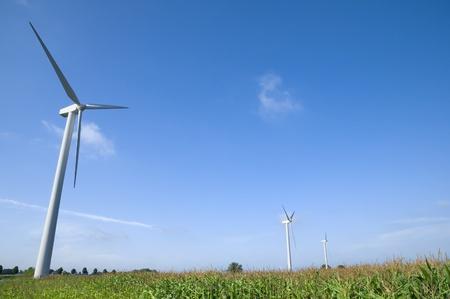 グリーン フィールドの風力タービン