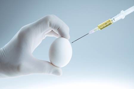 vaccinating: Fertilizing or vaccinating egg - conceptual artificial insemination Stock Photo