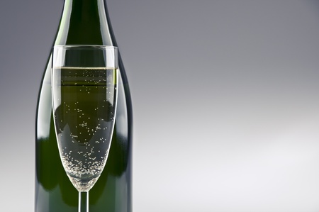 A champagne bottle and glass standing in front photo
