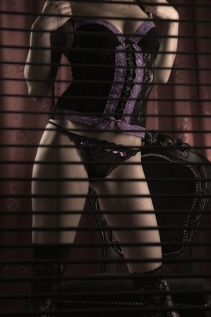Gorgeous female standing in lingerie behind blinds Stock Photo - 10276237