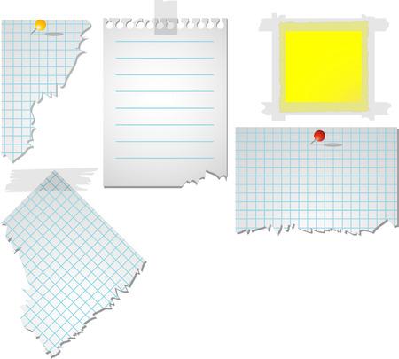 tachuelas: Vector arrancado el papel