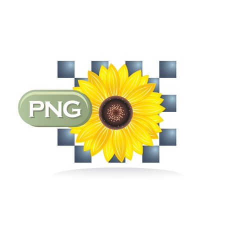 png: png icon