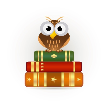 wise owl: owl on books icon Illustration