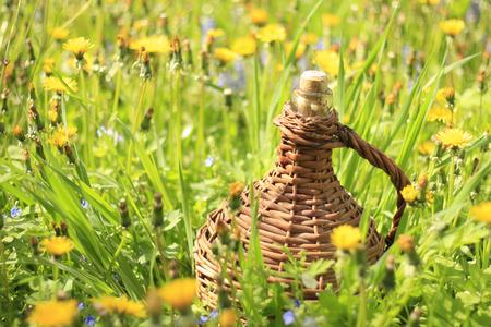 demijohn: demijohn in the grass