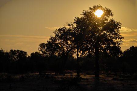 Sun setting on lower zambezi national park