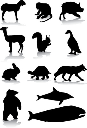 Animal silhouettes Vector