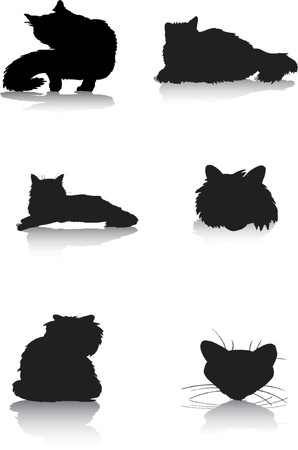 cat grooming: Cat silhouettes Illustration