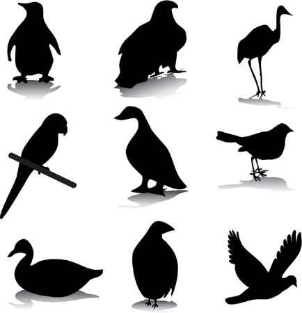 Bird silhouettes Stock Vector - 701564