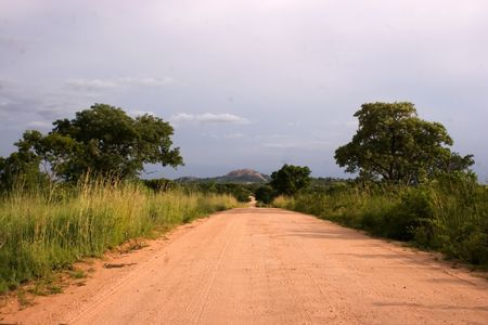 dirtroad: dirtroad in the Kruger Park South Africa Stock Photo