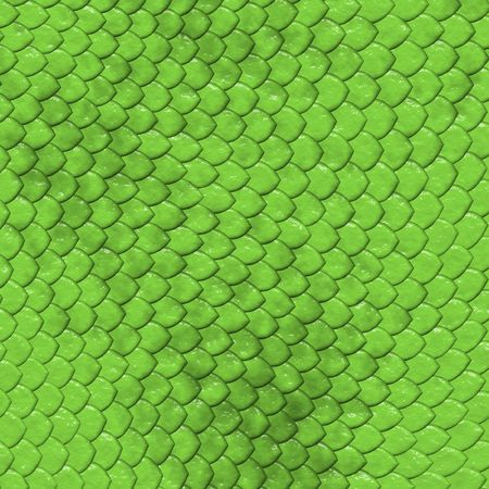 Illustrated green scaly background