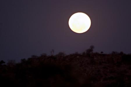 Full moon in Tuli Block in Botswana