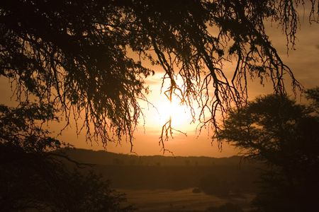 Sunset in Kgalagadi Transfrontier Park