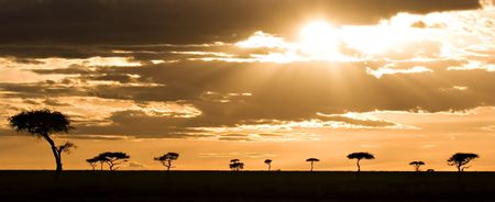 masai: Sunset in the Masai Mara Kenya