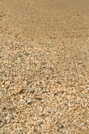 Texture of beach sea sand photo