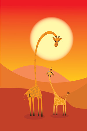 two giraffes in sunset  Illustration