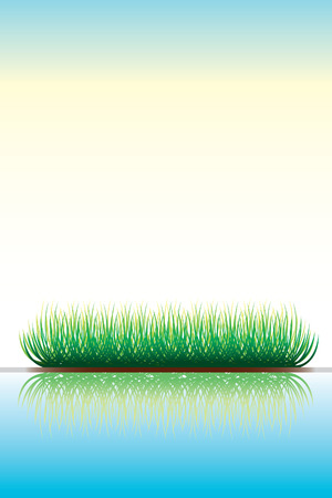 Green grass with reflection in water