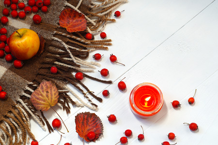 Autumn top view composition with apple, lighted candle and rowan for text space