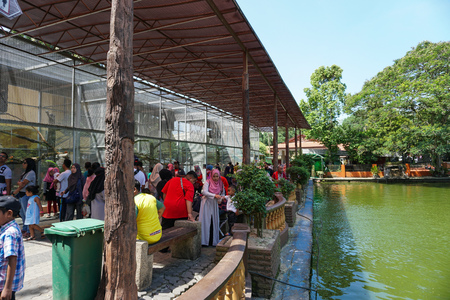 JOHOR, MALAYSIA - FEBRUARY 2019 : Malaysian spending their Chinese New Year long holiday visiting the Johor Zoo in Johor Bahru. Redakční