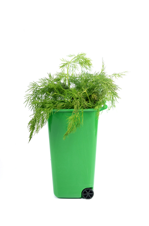 Empty green plastic recycle bin isolated, recycling concept